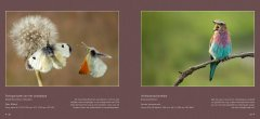 BVNF-NatuurlijkIV-screen-spread-preview-all-20161024-20.jpg