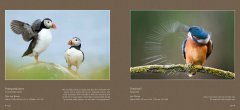 BVNF-NatuurlijkIV-screen-spread-preview-all-20161024-66.jpg