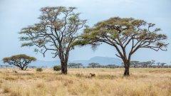 20180928_065_Cath_sep2018_Tanzania-4.jpg
